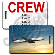 DELTA B767-432 CREW TAGS