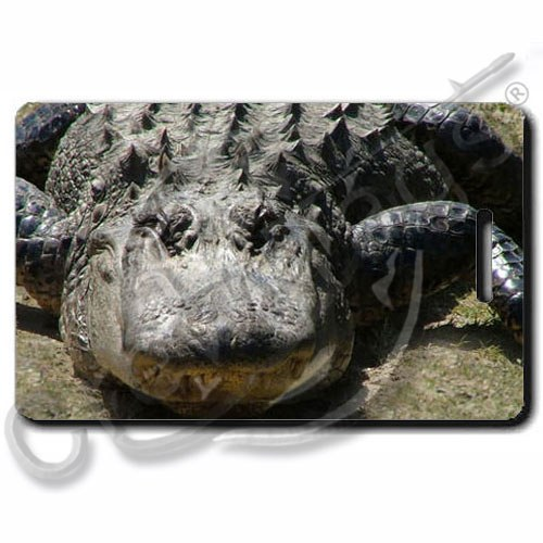 AMERICAN ALLIGATOR LUGGAGE TAGS