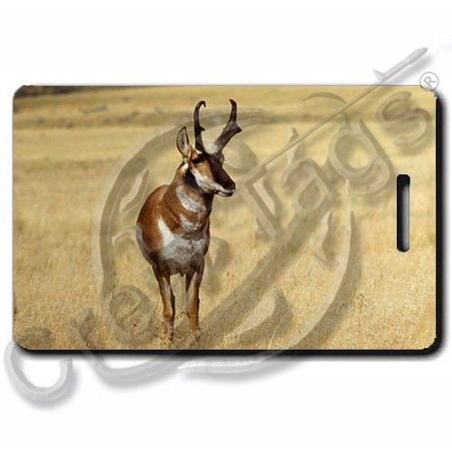 ANTELOPE LUGGAGE TAGS