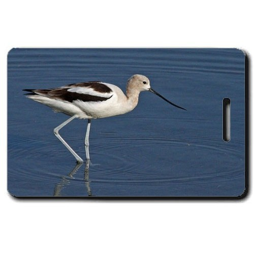 AVOCET LUGGAGE TAG
