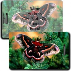 CECROPIA MOTH LUGGAGE TAG