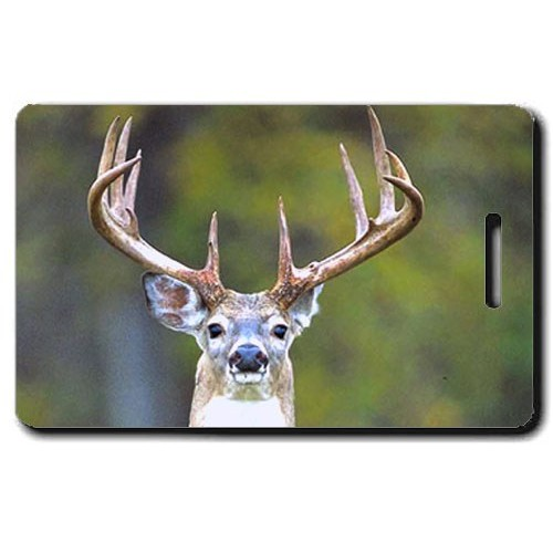 WHITE TAIL DEER LUGGAGE TAG