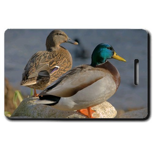 MALLARD DUCK LUGGAGE TAG