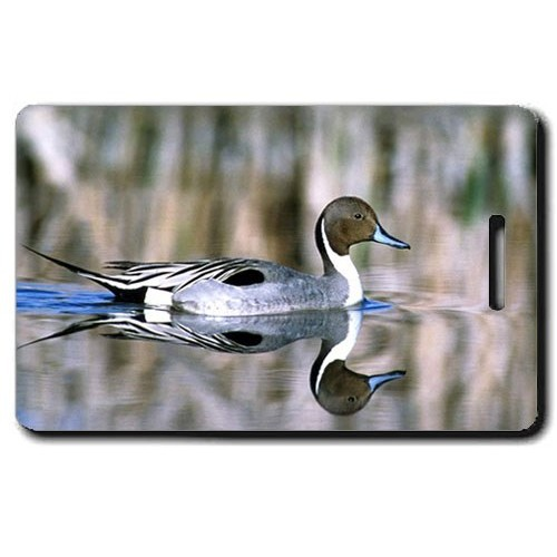 NORTHERN PINTAIL DUCK LUGGAGE TAG
