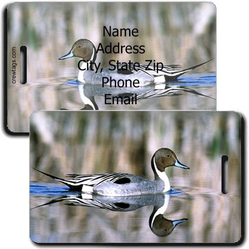 NORTHERN PINTAIL PERSONALIZED DUCK LUGGAGE TAG