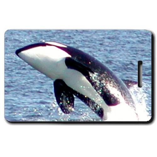 ORCA LUGGAGE TAG