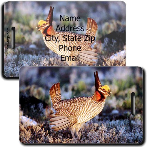 PRARIE CHICKEN PERSONALIZED LUGGAGE TAG