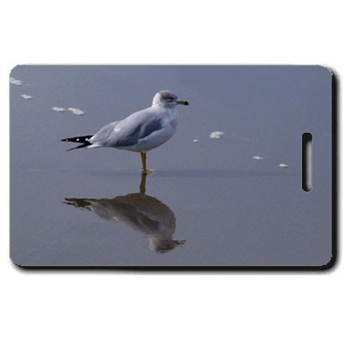 SEAGULL LUGGAGE TAG