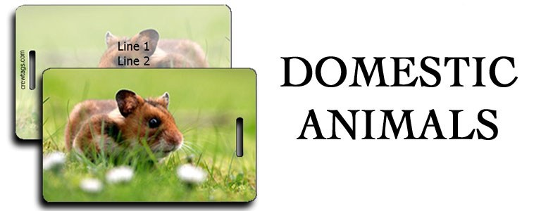 DOMESTIC ANIMALS LUGGAGE TAGS