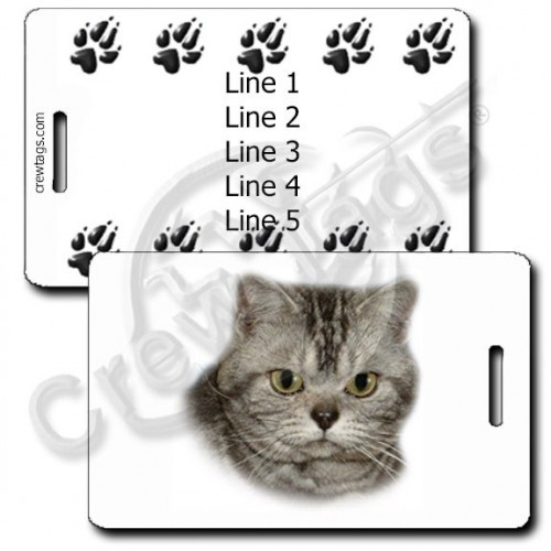 AMERICAN SHORTHAIR CAT WITH PERSONALZIED PAW PRINT BACK LUGGAGE TAGS