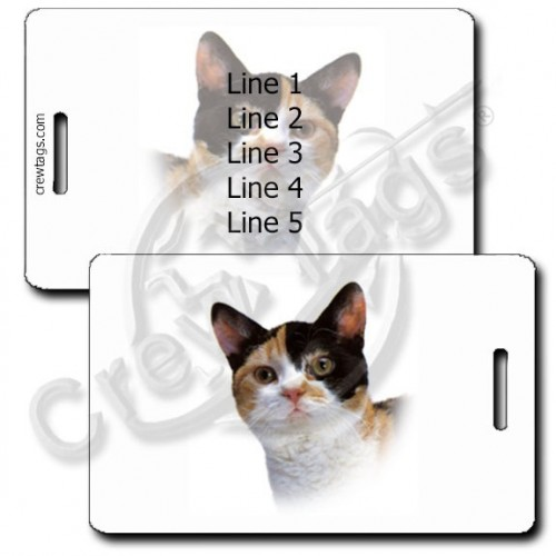 AMERICAN WIREHAIR CAT PERSONALIZED LUGGAGE TAGS