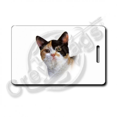 AMERICAN WIREHAIR CAT LUGGAGE TAGS