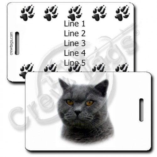 PERSONALIZED BRITISH SHORTHAIR CAT LUGGAGE TAGS WITH PAW PRINT BACK