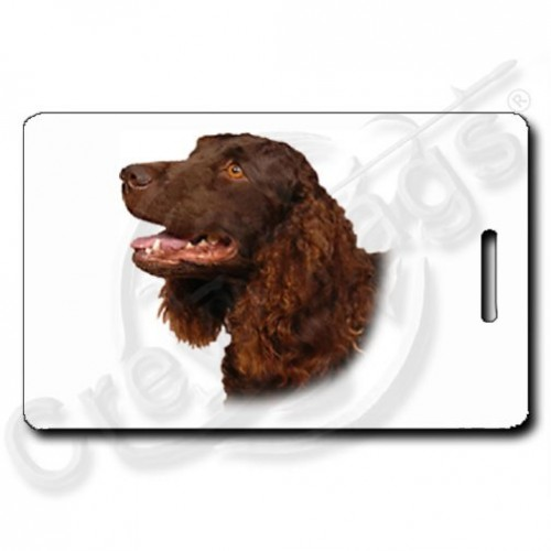 AMERICAN WATER SPANIEL LUGGAGE TAGS