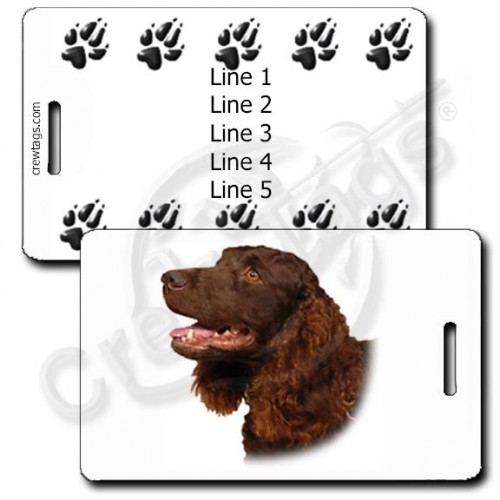 AMERICAN WATER SPANIEL WITH PAW PRINT PERSONALIZED LUGGAGE TAGS