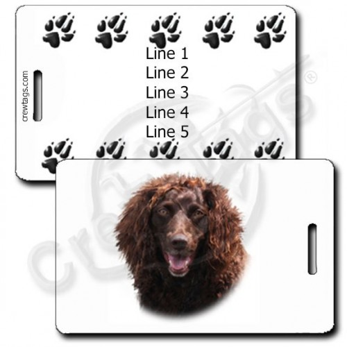 PERSONALIZED BOYKIN SPANIEL LUGGAGE TAGS WITH PAW PRINT BACK