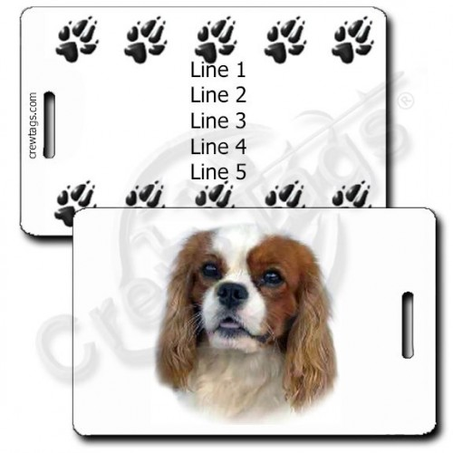PERSONALIZED CAVALIER KING CHARLES SPANIEL LUGGAGE TAGS WITH PAW PRINT BACK