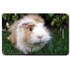 Guinea Pig Luggage Tag (Long Hair)